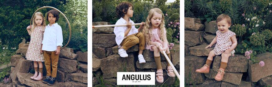 Angulus
